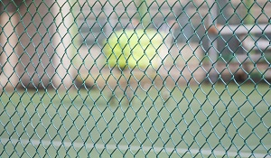 Vinyl-Coated-Chain-Link-Fence