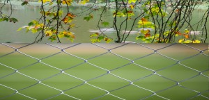 Beautify Chain Link Fence