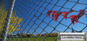 Jazz up Landscape around Your Chain Link Fence