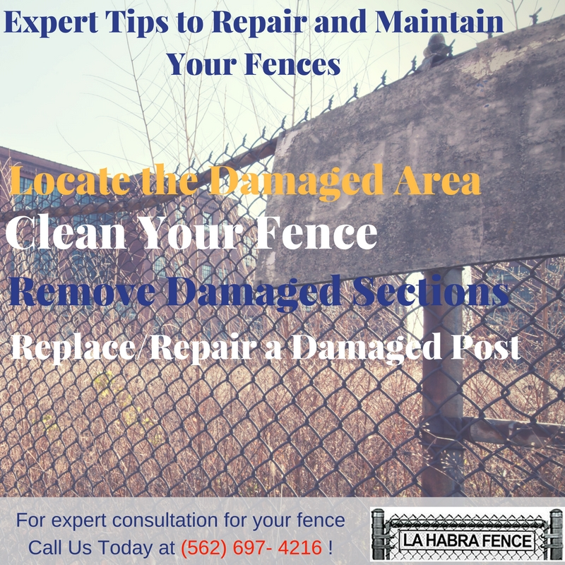 Expert Tips to Repair and Maintain Your Fences