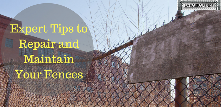 Maintain Your Fences
